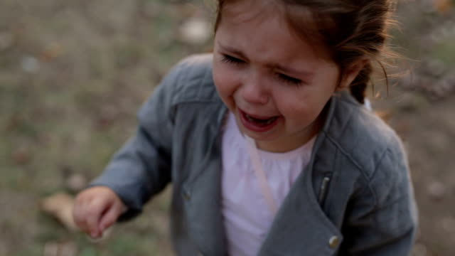 shouting child crying in the park - 2 3 years stock videos and b-roll footage