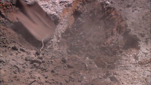 ms ha pan shovel digging trench in dirt, rainbow valley, northern territory, australia - 掘る点の映像素材/bロール