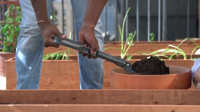 Shovelling soil into a planter box