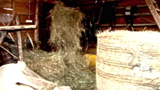hd: shovelling stroh - digitale verbesserung stock-videos und b-roll-filmmaterial