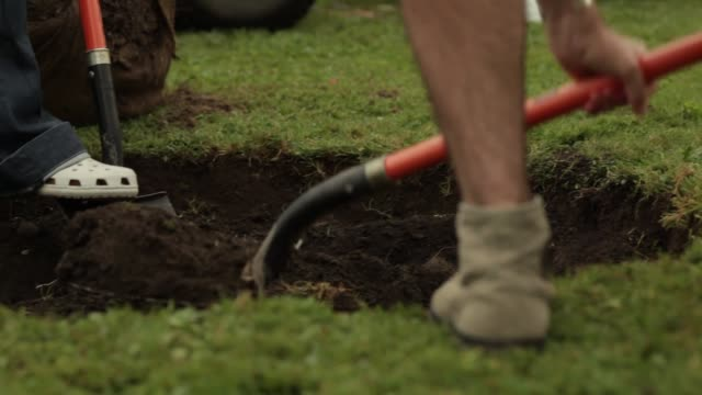 cu of shovels digging a hole for a tree planting - dirt stock videos & royalty-free footage