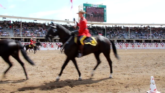 ms show at calgary stampede / calgary, alberta, canada  - alberta stock videos & royalty-free footage