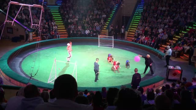 A show at the Minsk State Circus on July 03 2017 in Minsk Belarus The postSoviet republic of Belarus borders Poland to its West Lithuania to its...