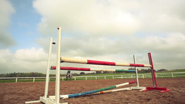 show jumping - hurdling horse racing stock videos and b-roll footage