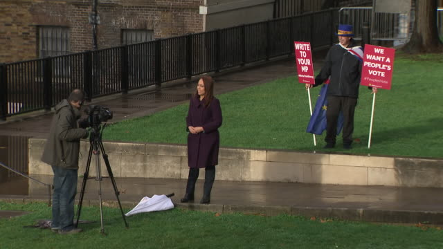 shows exterior shots campaigner steve bray shouty brexit man arriving at college green standing in background of reporter talking to camera and... - pole stock videos & royalty-free footage