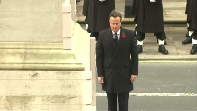 shows exterior shots david cameron prime minister of great britain laying commemorative wreath at cenotaph in london the queen has led tributes to... - 戦争記念碑点の映像素材/bロール