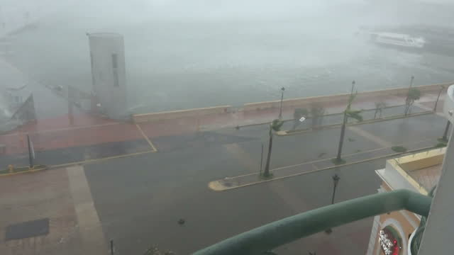 shows exterior shots from hotel window strong winds as hurricane maria arrives in san juan, with waves throwing water across the road and palm trees... - major road bildbanksvideor och videomaterial från bakom kulisserna