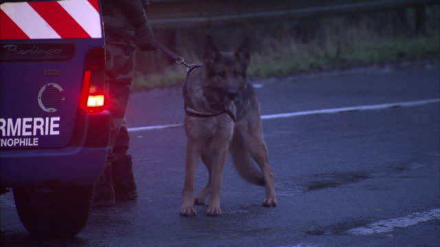 shows exterior shots gendarmerie roadblock in longpont & crew walking around with sniffer dogs. on january 09, 2015 in longpont, france. - polizeirevier stock-videos und b-roll-filmmaterial