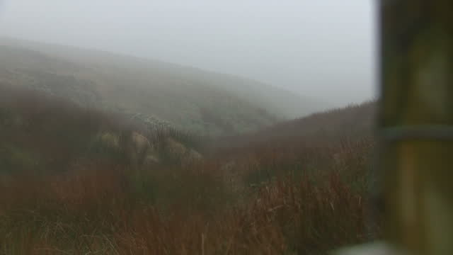 shows exterior shots mist coming in over saddleworth moor ian brady one of the most notorious criminals in british history has died at the age of 79... - moor stock videos & royalty-free footage