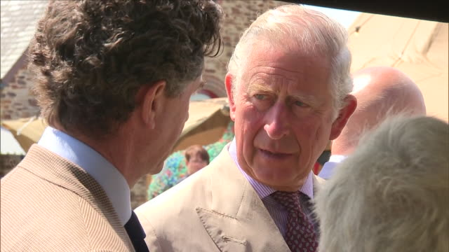 shows exterior shots prince charles, prince of wales looking at sheep who provide wool for finisterre clothing company a visit to the ocean plastic... - responsibility stock videos & royalty-free footage