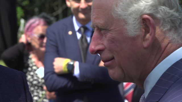 shows exterior shots prince charles prince of wales talking to people after the ceremony for the unveiling of the police memorial for those who die... - activity stock videos & royalty-free footage