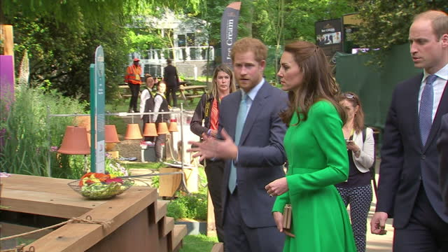 shows exterior shots prince harry catherine duchess of cambridge and prince william duke of cambridge walking between gardens and standing looking at... - chelsea flower show stock videos & royalty-free footage