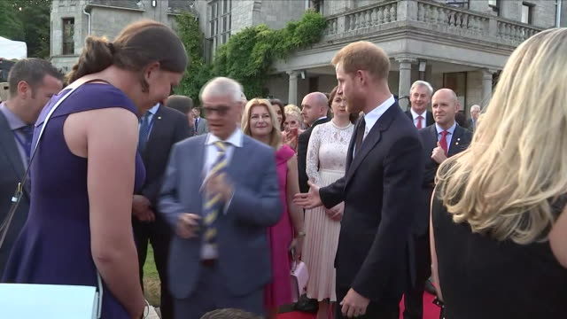 shows exterior shots prince harry duke of sussex walking through crowd shaking hands at a reception at glencairn the residence of robin barnett the... - アイルランド共和国点の映像素材/bロール
