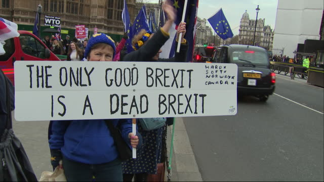 vidéos et rushes de shows exterior shots pro-eu protesters gathered on college green holding signs, posters and eu flags and brexit supporters holding leave means leave... - montrer