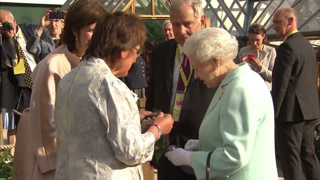 shows exterior shots queen elizabeth ii meeting and talking to jekka mcvicar, organic gardening expert, who gave the queen a posy containing lily of... - day lily stock videos & royalty-free footage