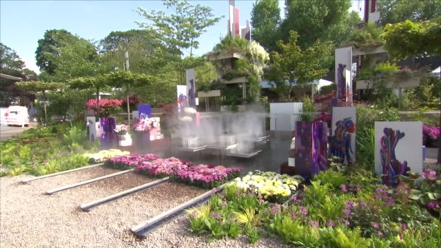 shows exterior shots the wuhan water garden, china at the chelsea flower show on 21st may, 2018 in london, england, united kingdom - festival dei fiori di chelsea video stock e b–roll