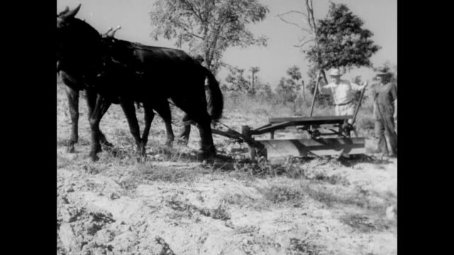 / TVA shows farmer new farming techniques / TVA man John Warden explains principles of contour farming to farmer / farmer pushes plow through a...