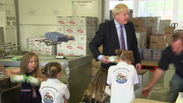 shows interior shots british prime minister boris johnson mp being put to work by the shevingtons on their chicken farm in wales yesterday the prime... - prime minister of the united kingdom stock videos and b-roll footage