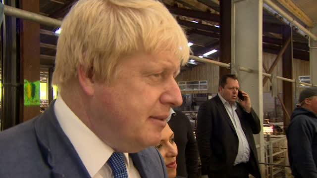 shows interior shots conservative mps and 'out' campaigners boris johnson and priti patel looking at sheep in pens at farmer's auction and talking... - sheep点の映像素材/bロール