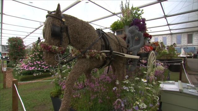 shows interior shots elaborate display of flowers at the chelsea flower show on 21st may, 2018 in london, england, united kingdom - chelsea flower show stock videos & royalty-free footage