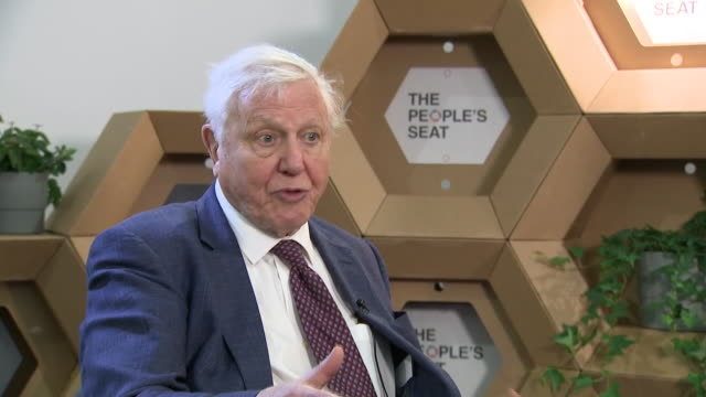 shows interior shots interview with naturalist sir david attenborough speaking on effects of climate change, the paris agreement, the united states... - paris agreement stock videos & royalty-free footage