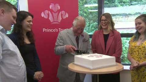shows interior shots prince charles, prince of wales cutting a piece of cake on a visit to the prince's trust call centre . the prince of wales, the... - プリンスズトラスト点の映像素材/bロール