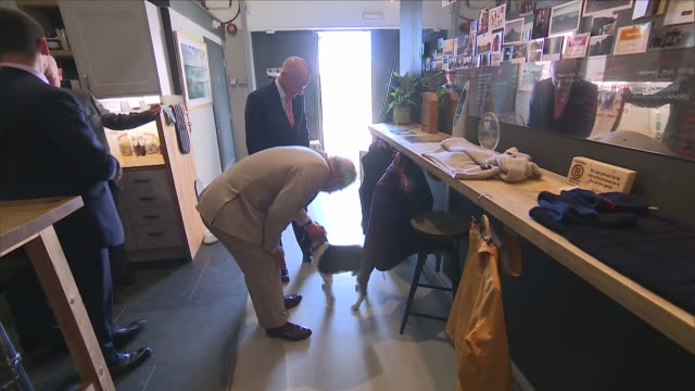 shows interior shots prince charles prince of wales meeting otis the dog on a visit to the ocean plastic solutions day organised by surfers against... - cornwall england stock-videos und b-roll-filmmaterial