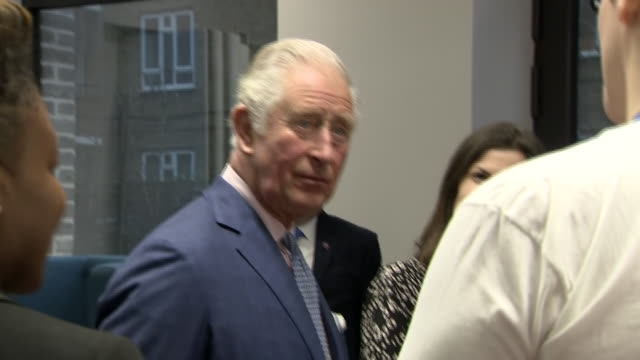 shows interior shots prince charles prince of wales meeting young people including olympic gold medallist nicola adams and watching a emonstration... - medallist stock videos & royalty-free footage