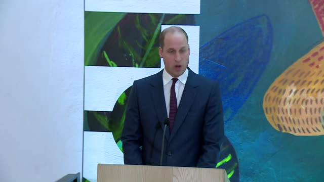 shows interior shots prince william, duke of cambridge, and giving speech at a reception in dublin, on second day of their official visit to ireland.... - dublin republic of ireland stock videos & royalty-free footage