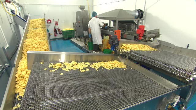 shows interior shots production line in small factory of two farmers crisps crisps being fried in oil moving along conveyor belts to dry as factory... - industriegerät stock-videos und b-roll-filmmaterial