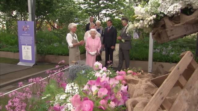 shows interior shots queen elizabeth ii chatting to one of the gardeners at the chelsea flower show on 21st may 2018 in london england united kingdom - chelsea flower show stock videos & royalty-free footage