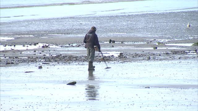 shows man walking along beach at bognor regis seafront, using metal detector. - 宝探し点の映像素材/bロール