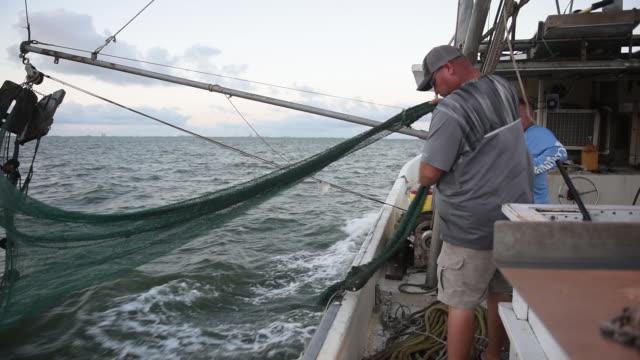 vídeos de stock e filmes b-roll de shrimp boat fishing loading and unloading of shrimp in dickinson, texas, u.s, on wednesday, may 30, 2018. - camarão