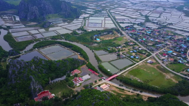 shrimp farms from above - sezione superiore video stock e b–roll