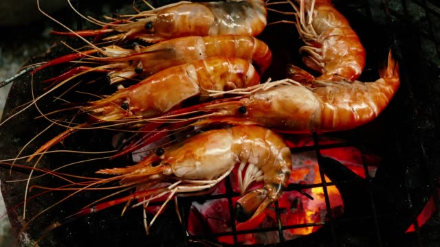 shrimp on the grill - invertebrate stock videos & royalty-free footage