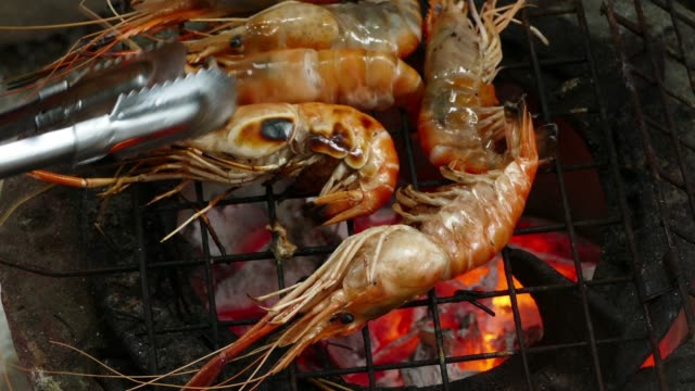 shrimp on the grill - prawn animal stock videos and b-roll footage