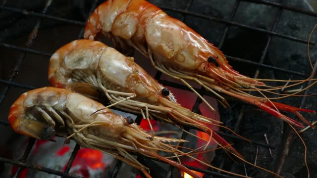 shrimp on the grill - skewer stock videos & royalty-free footage