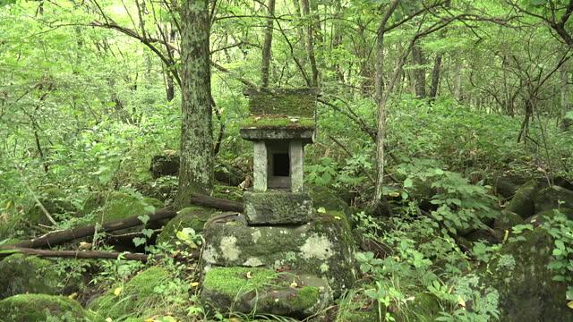 shrine at metori spring, yamanashi, japan - shrine stock videos & royalty-free footage