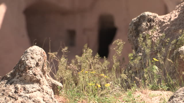 shrub and house, cappadocia, turkey - cliff dwelling stock videos & royalty-free footage