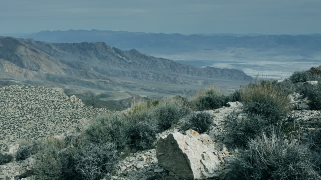 Shrub Covered Slope Above Death Valley