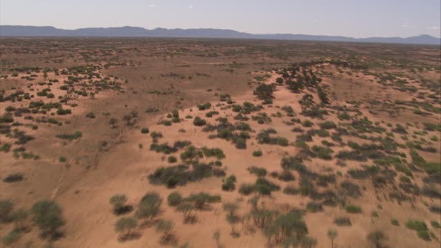Shrubs cover a red desert in Queensland, Australia.