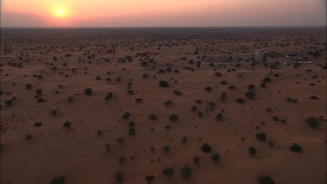 vídeos y material grabado en eventos de stock de shrubs dot the kalahari desert in botswana. available in hd. - desierto del kalahari