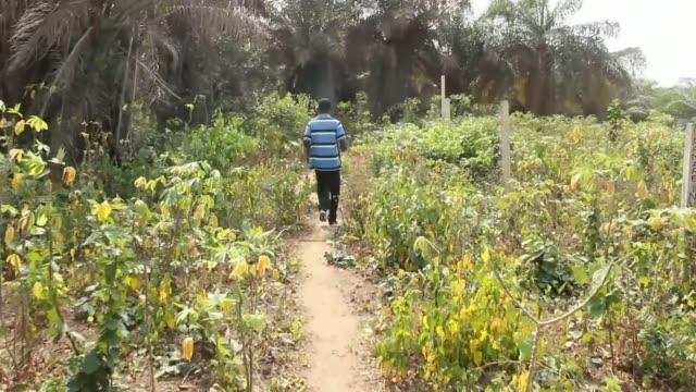 arthur simpsonkent paraded before press busua ext men along path alongside trees - arthur simpson kent stock videos & royalty-free footage