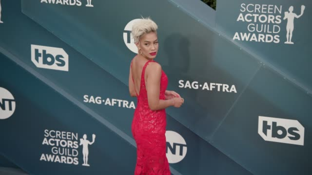sibley scoles at the 26th annual screen actors guild awards arrivals at the shrine auditorium on january 19 2020 in los angeles california - shrine auditorium stock videos & royalty-free footage