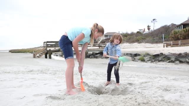siblings digging in the sand at the beach - little girls bare feet stock videos and b-roll footage