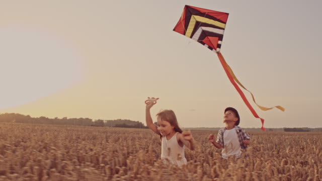 slo mo siblings flying a kite - kid with kite stock videos & royalty-free footage
