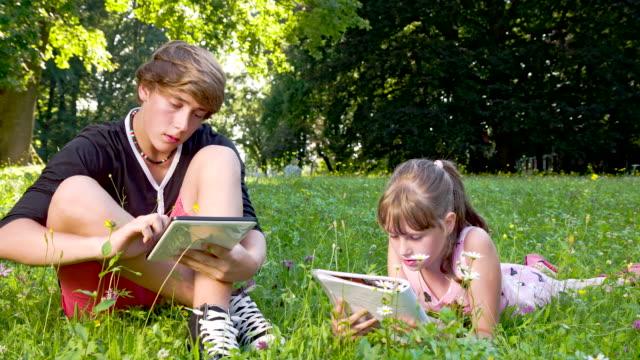 ls ds geschwister im park - männlicher teenager stock-videos und b-roll-filmmaterial