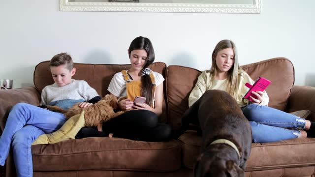 vidéos et rushes de frères et sœurs sur leurs téléphones - un jour comme les autres images en série