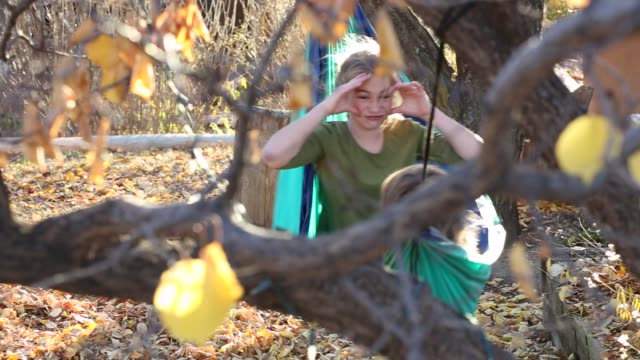 siblings playing in hammock - teasing stock videos and b-roll footage
