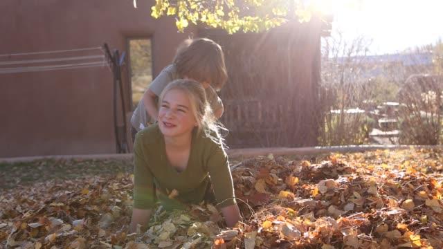 siblings playing in pile of autumn leaves - ポニーテール点の映像素材/bロール